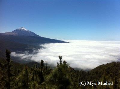 テイデ山の画像 p1_4