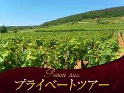 ブルゴーニュのブドウ畑のクリマの画像 p1_26